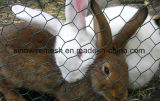 動物のための六角形ワイヤー網