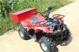 Большая ферма ATV хранения, электрический автомобиль для взрослых