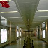 ホールのための偽のストリップの天井デザインにパネルをはめる安い内壁