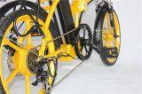 """lega di alluminio della batteria di litio 36V 20 """" che piega bicicletta elettrica (JSL039X48-7)"""