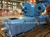 Электрический двигатель фабрики большой для шлюпки/автомобиля