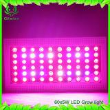 300W СИД растут выращивание растения Veg светлого полного светильника иК спектра UV крытое цветя с последовательным подключением и более большой зоной освещения