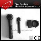 Schrauben des Augen-DIN444 rostfreie Steel304 316