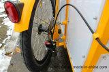 3 tricycles Bakfiets de roues avec la couverture de toile