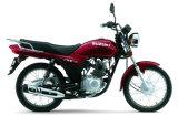 Il motociclo parte il motociclo Accessorio-Tutto motociclo di Moden