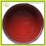 Pasta de tomate asséptico, purê de tomate Vegetal enlatado