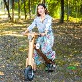 Glodenカラー36V携帯用移動性のスクーター