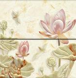 mattonelle di ceramica di disegno del marmo 300X600 per la parete ed il pavimento