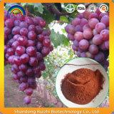 Estratto del seme dell'uva per la signora Health