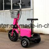elektrisches Ingwer Roadpet Cer des Roller-3-Wheels