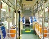 Sede al suolo del bus della palestra del crogiolo di vettura