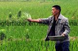 98% kupfernes Sulfat-Pentahydrat für die Landwirtschaft
