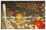 鶏Waterer及び養鶏場(プラスチック)のための酒飲みシステム