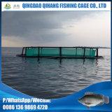 Водохозяйство реки HDPE растет вне клетка сети фермы рыб