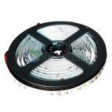 C.C. flexible 12V/24V de la tira el 120LEDs/M de la luz de SMD2835 LED con precio competitivo