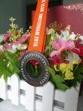 Medallas de encargo vendedoras calientes de lanzamiento del acontecimiento deportivo del níquel con la cinta