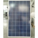 Panneaux solaires de vente chaude, piles solaires poly 250W