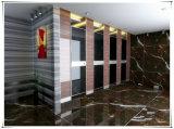 De Kleurrijke Compacte Gelamineerde Deur van het Toilet van de Raad van de Verdeling HPL