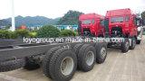 T5g 10X4 de Vrachtwagen van de Lading HOWO voor het Vervoer van Goederen