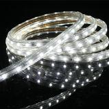 Tira IP67 impermeable ETL/Ce RoHS los 60LEDs/M 100m/Roll de 3528 SMD LED