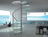 Glas tritt gewundenes Treppenhaus