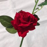 Il tocco reale Rosa artificiale di seta fiorisce i fiori falsi per gli accessori domestici della decorazione di cerimonia nuziale