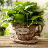 (BC-WF1027)環境に優しいハンドメイドの自然なヤナギの花のバスケット