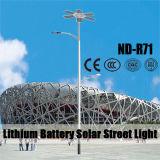 6m 12V 30~80ahのリチウム電池が付いているセリウムの証明書が付いている街灯柱の太陽街灯