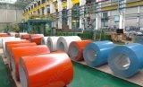 冷間圧延された鋼鉄コイルは電流を通された鋼鉄コイルかRal3005、3009 PPGIをPrepainted