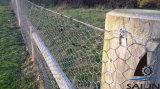 Il pollame di Sailin recinta la rete fissa del giardino