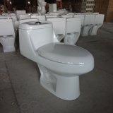 南アメリカのための昇進の高品質の一つの洗面所
