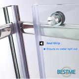 Porta Stainless-Steel do chuveiro da dobradiça do projeto simples (BL-F3010)
