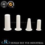 Nitruro di ceramica personalizzato del boro del Rod di temperatura con buona concentrazione ed efficace costo