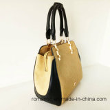 도매 PU 숙녀 핸드백 형식 가죽 가방 (NMDK-041502)