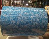 la hoja azul de la impresión PPGI de la pluma del color para adorna