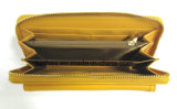 Wallet di colore giallo di modo dell'unità di elaborazione della signora elegante