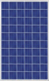 Migliore modulo di vendita più caldo di alta efficienza 260W poli PV di prezzi di Csun 2016