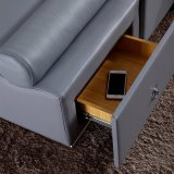 Bâti gris de cuir de couleur pour l'usage de chambre à coucher (FB8155)