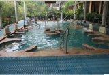 屋外か屋内鉱泉のマッサージのプール