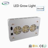 200PCS*10W les lumens élevés DEL se développent légers pour la centrale d'intérieur