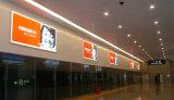 Aluminiummaterial-Verschluss-Feld LED, das an der Wand befestigten bekanntmachenden hellen Kasten beleuchtet