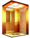 جعل مصنع [شنس] لطيفة نوعية مسافر مصعد