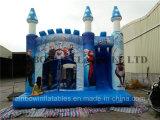 Giocattolo del castello di regina della principessa Theme Inflatable Snow da vendere congelato
