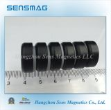 塗られる鍋の磁石Epoxyedを持つ常置磁気アセンブリ