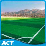 L'erba artificiale, erba di gioco del calcio, mette in mostra l'erba, l'erba sintetica (W50)