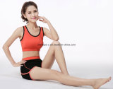 As mulheres ostentam rapidamente Shorts que da ioga do sutiã a ginástica desgasta a roupa atlética