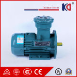 AC van het Bewijs van de Vlam Elektrische Motor in drie stadia met 380V