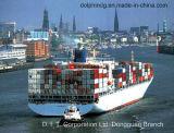 Container die van Shenzhen aan Djakarta/Surabaya/Semarang Indonesië verschepen