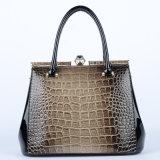 Nuova unità di elaborazione Handbags di Style Lady Desigber con Highquality (P6397)