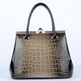 High Quality (P6397)를 가진 Lady 신식 Desigber PU Handbags
